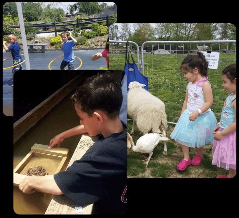 fun family farm