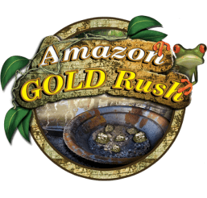 gold rush activities for students