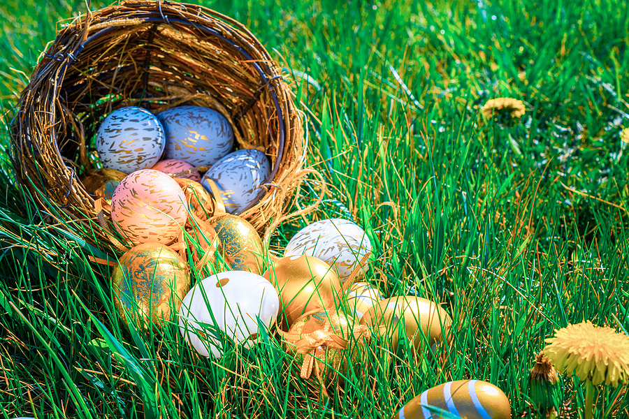 Looking for a Local Easter Egg Hunt? Check Out Oasis Family Farm
